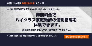 brushtop2