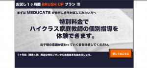 brushtop